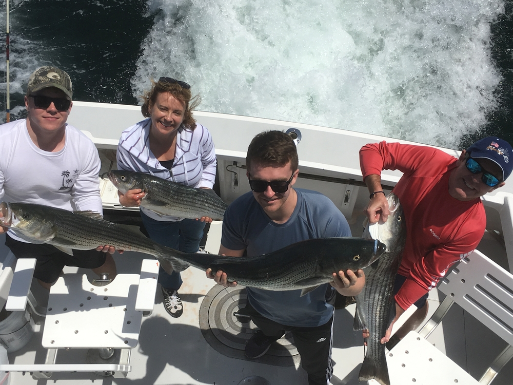 cape cod fishing charters